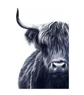 Toile Vache Highland XXL