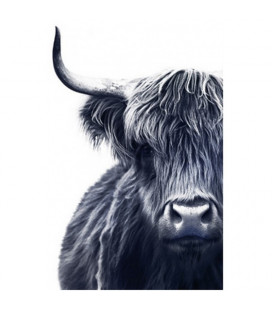 Toile Vache Highland XL