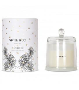 Bougie Cloche Parfum d'Hiver Pin/Cyprès