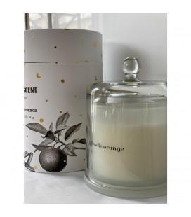 Bougie Cloche Parfum d'Hiver Cannelle /Orange