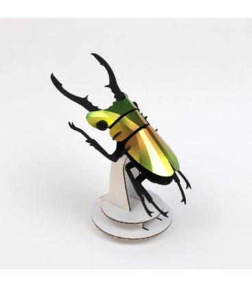 Kit Scarabée Coléoptère Vert Mangue DIY