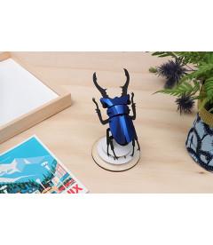 Kit Scarabée Coléoptère Bleu Métallique DIY
