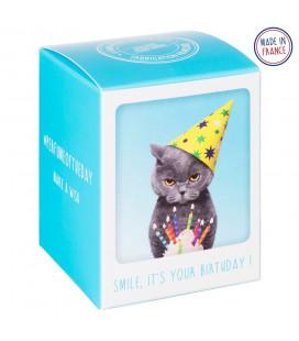 Bougie 'Moodoftheday' Birthday Cat