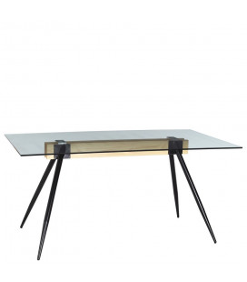Table Transparent 160cm