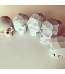 Sapiens Xl Blanc
