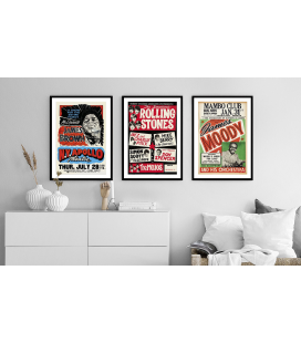 Affiche Concert James Brown