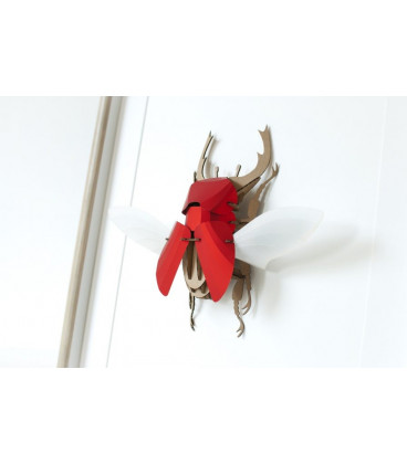 Scarabé Stag Beetle Rouge