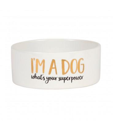 Dog Superpower Pet Bowl