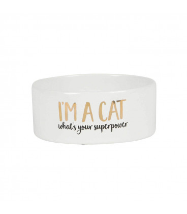 Cat Superpower Pet Bowl