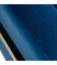 Fauteuil Wild BlueGold