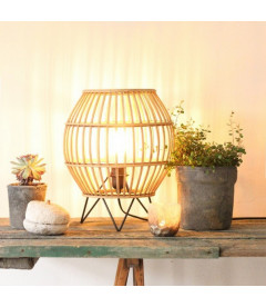 Lampes Nature